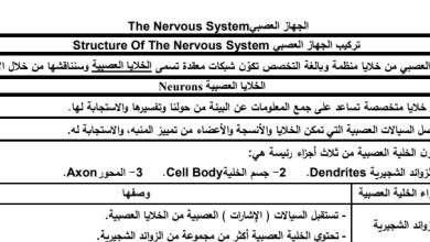 Photo of صف تاسع متقدم فصل ثاني احياء تلخيص شامل الجهاز العصبي