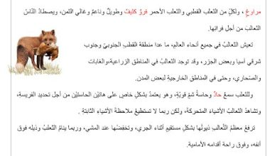 Photo of صف خامس فصل ثاني تمارين لغةعربية شامله اختيار من متعدد