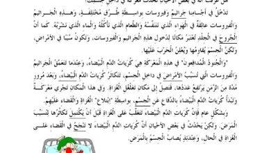 Photo of صف سادس فصل ثاني تمارين استيعاب وفهم المقروء لغة عربية