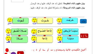 Photo of صف ثاني فصل ثاني ورقة عمل التاء المفتوحة والمربوطة لغة عربية