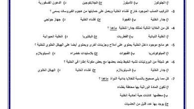 Photo of صف سادس فصل ثاني أوراق عمل علوم درس الخلية