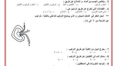Photo of صف تاسع فصل ثاني أحياء ورق عمل محلول مراجعة درس الجهاز الاخراجي