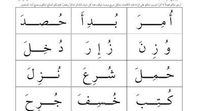 Photo of صف الأول تدريبات قراءة (الكلمات بالحركات الثلاثة)
