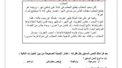 Photo of تدريبات فهم واستيعاب لغة عربية صف خامس فصل ثاني
