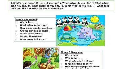 Photo of صف أول فصل ثاني اللغة الانجليزية بعض اسئلة امتحان التحدث