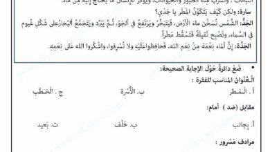 Photo of أوراق مراجعة لغة عربية لاختبار نهاية الفصل الثاني صف ثاني