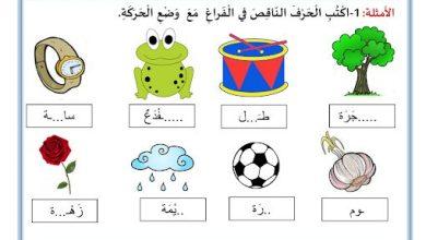 Photo of نموذج ارشادي لامتحان الكتابة لغة عربية صف أول فصل ثاني
