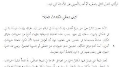 Photo of تدريبات فهم المقروء لغة عربية صف سادس فصل ثالث
