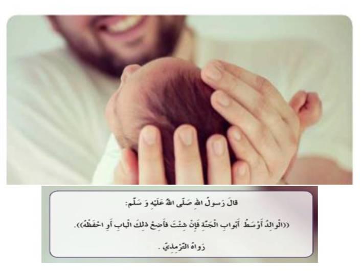 حل درس رسالة إلى أبي