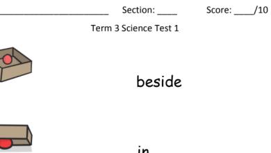 Photo of أوراق عمل علوم منهج إنجليزي صف ثاني فصل ثالث