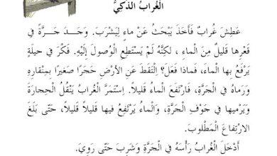Photo of أوراق عمل فهم المقروء لغة عربية (قصة الغراب الذكي) صف ثاني فصل ثالث