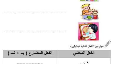 Photo of ورق عمل الجملة الفعلية والاسمية وظرف الزمان والمكان لغة عربية صف أول فصل ثالث