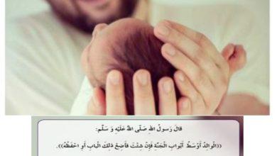 Photo of حل درس رسالة إلى أبي لغة عربية صف أول فصل ثالث