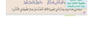 Photo of حل درس نسيم غرناطة لغة عربية صف سابع فصل ثالث