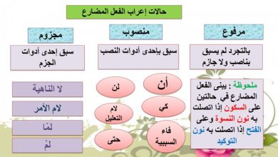 Photo of حل درس جزم الفعل المضارع لغة عربية صف سابع فصل ثالث