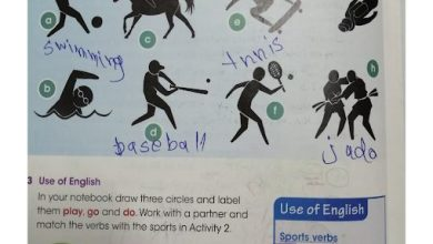 Photo of حل الوحده 10 من كتاب learner's book لغة إنجليزية صف رابع فصل ثالث