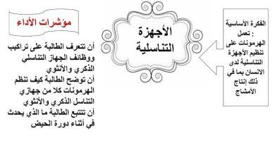 Photo of ملخص الأجهزة التناسلية أحياء صف تاسع متقدم فصل ثالث