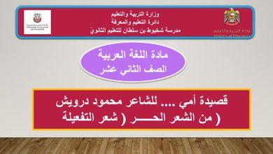 Photo of حل درس قصيدة إلى أمي لغة عربية صف ثاني عشر فصل ثالث