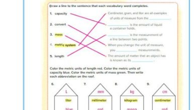 Photo of حل الفصل 14 رياضيات منهج إنجليزي صف رابع فصل ثالث