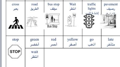 Photo of كلمات الوحدة التاسعة لغة إنجليزية صف ثاني فصل ثالث