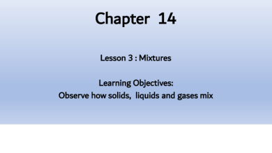Photo of تلخيص درس المخاليط مع حل أسئلة الكتاب علوم منهج إنجليزي صف خامس فصل ثالث