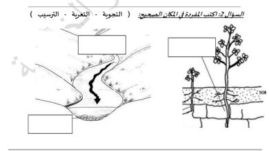Photo of ورقة عمل الدرس الأول علوم صف ثاني فصل ثاني