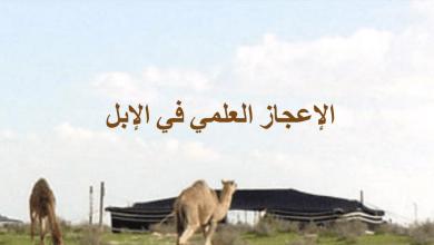 Photo of صف تاسع فصل ثاني تربية إسلامية الإعجاز العلمي في الإبل
