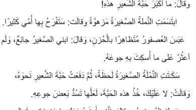 Photo of قصة النملة والعصفور مهارات القراءة لغة عربية صف ثالث فصل ثاني