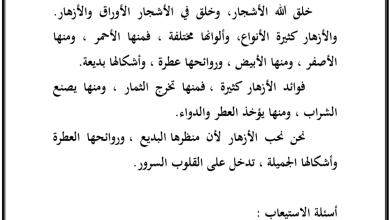 Photo of صف خامس فصل ثاني لغة عربية قواعد تدريبات الجملة الاسمية والفعلية