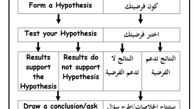 Photo of مراجعة علوم باللغتين عربي ومنهج صف رابع فصل أول