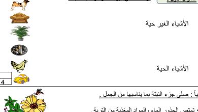Photo of التقويم الأول علوم صف أول فصل اول