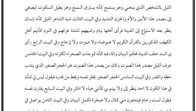 Photo of شرح قصيدة الحجر الصغير لغة عربية صف ثامن فصل أول
