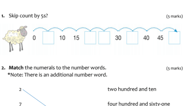 Photo of اسئلة تدريبية رياضيات منهج إنجليزي صف ثاني فصل أول