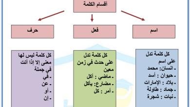 Photo of ورقة عمل أقسام الكلمة لغة عربية الصف الثالث الفصل الاول