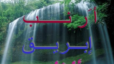 Photo of كلمات عربية بالأحرف الهجائية للصف الأول