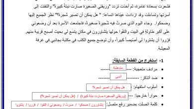Photo of أوراق مراجعة للفصل الدراسي الأول في مادة اللغة العربية للصف الخامس