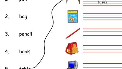 Photo of أوراق عمل في مادة اللغة الإنجليزية الفصل الأول للصف الأول