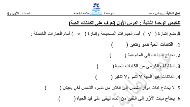 Photo of تلخيص الوحدة الثانية علوم فصل أول صف أول