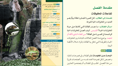 Photo of دليل معلم احياء الصف الحادي عشر المتقدم