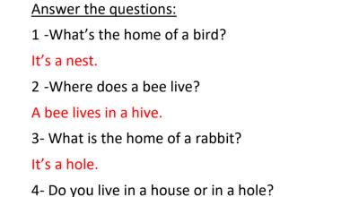 Photo of أوراق عمل الوحدة 8 مع الإجابات اللغة الإنجليزية للصف الثالث فصل ثالث