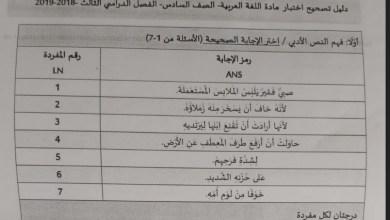 Photo of دليل تصحيح لغة عربية سادس فصل ثالث 2019