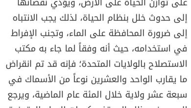 Photo of مواضيع كتابة مقترحة لغة عربية صف سادس فصل ثالث