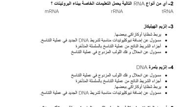 Photo of مراجعة علم الوراثة الجزيئية أحياء صف ثاني عشر متقدم فصل ثاني