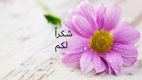 حل درس آداب تلاوة القرآن