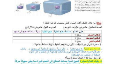 Photo of مذكرة الوحدة الأولى التكاثر الخلوي أحياء صف عاشر فصل ثاني