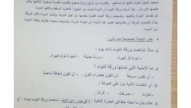 Photo of امتحان تكويني لغة عربية 2020 صف ثاني فصل ثاني