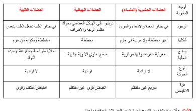 Photo of ملخص الجهاز العضلي أحياء صف ثاني عشر عام فصل ثاني