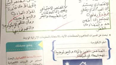 Photo of حل الرؤية الثانية عناصر ومؤشرات للتنمية المستدامة دراسات اجتماعية صف عاشر