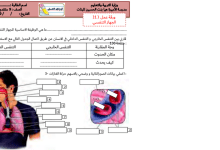 Photo of ورقة عمل الجهاز التنفسي مع الحل علوم صف تاسع فصل ثاني