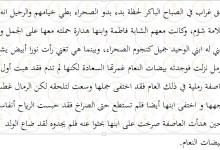 Photo of تلخيص رواية الولد الذي نام مع النعام